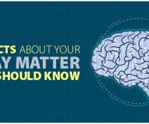 25 Facts about Your Gray Matter You Should Know